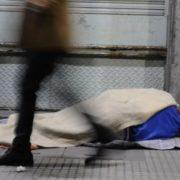 """""""La cuarentena hizo que muchos municipios abran nuevos paradores"""""""