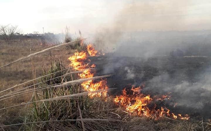 Denuncian nuevos incendios intencionales en la reserva de Santa Catalina