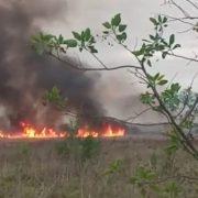 Denuncian reiterados incendios en Santa Catalina y exigen la protección del humedal