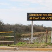 Vecinos Autoconvocados organizan festival para salvar el Arroyo San Vicente