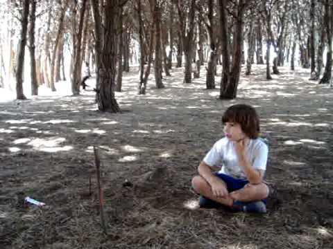 bosque-miramar.jpg