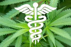 Denuncian falta de cannabis medicinal
