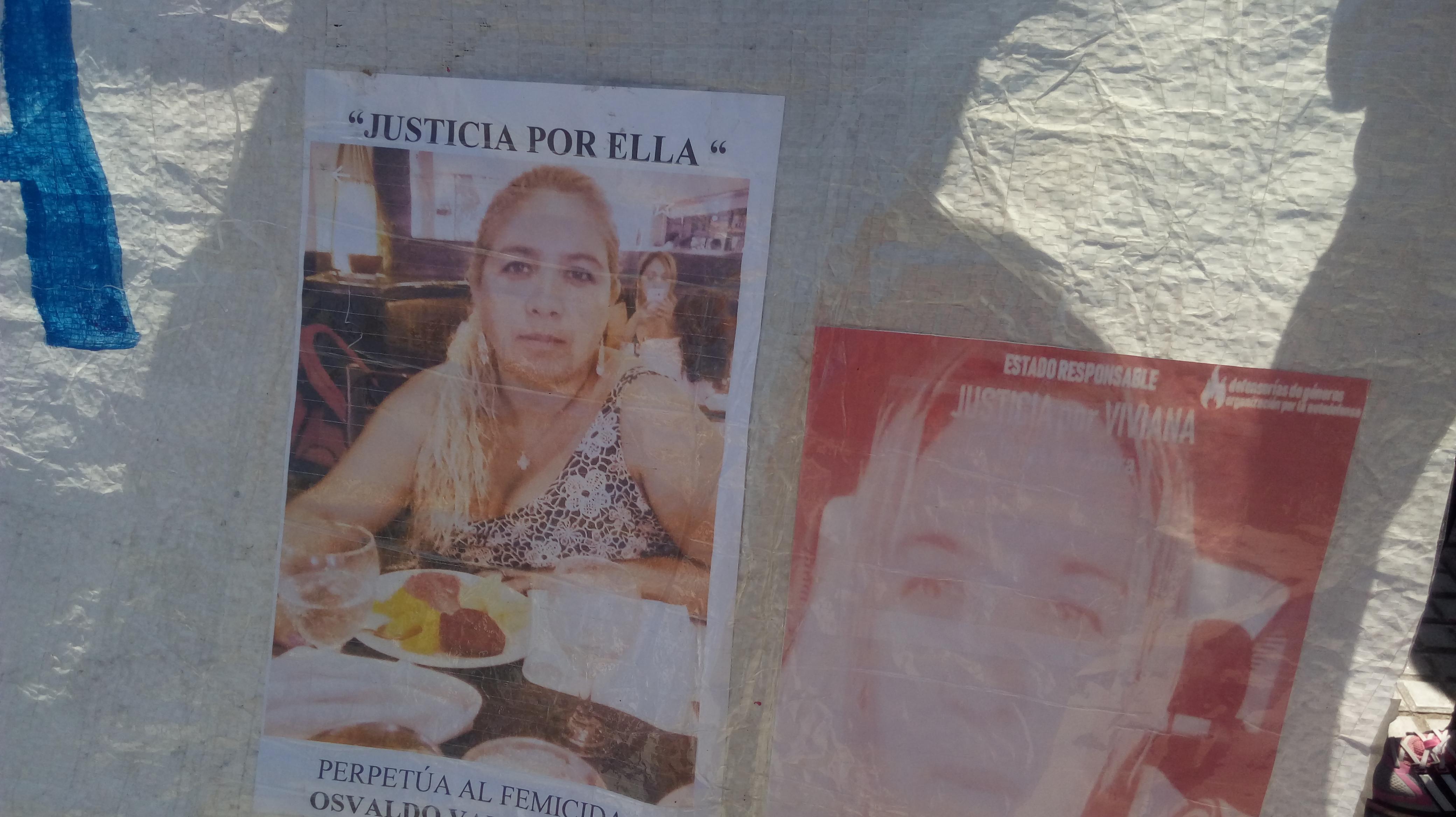 Pancartas Viviana Gómez