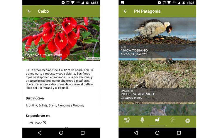 Argentina Natural, una aplicación para recorrer los Parques Nacionales