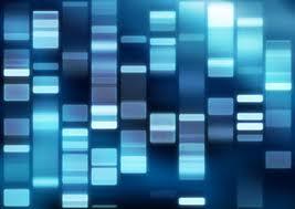 La Ciencia ayuda a combatir el delito