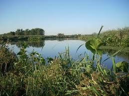 """Reclaman """"medidas efectivas"""" para la protección de la Laguna de Rocha"""
