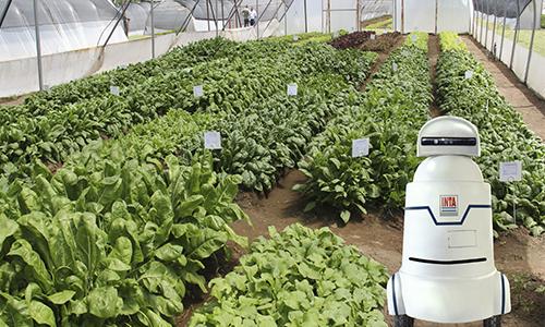 Desarrollan robot para ser utilizado en el sector agropecuario