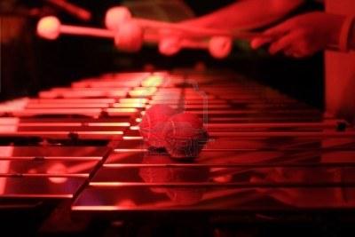 """""""El músico es una persona que tiene un mensaje para dar con su instrumento"""""""